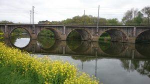 Un pont et des ronds dans l'eau